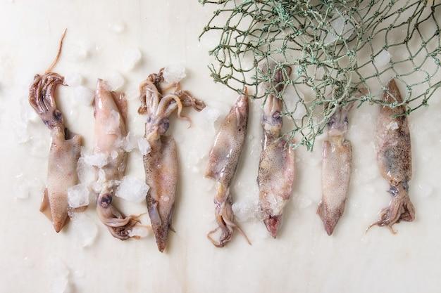Kalmary surowe kalmary