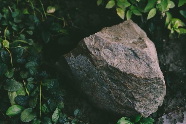 Kamień leży na ziemi