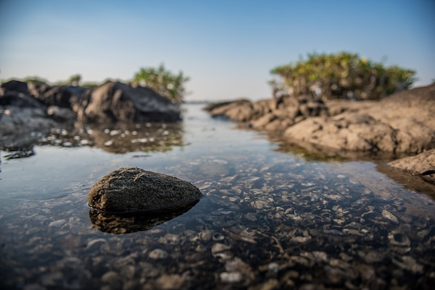 Kamień w wodzie morskiej