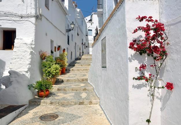 Kamienice wzdłuż typowej bielonej wiejskiej ulicy, frigiliana, andaluzja