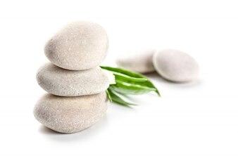 Kamienie i zielone liście