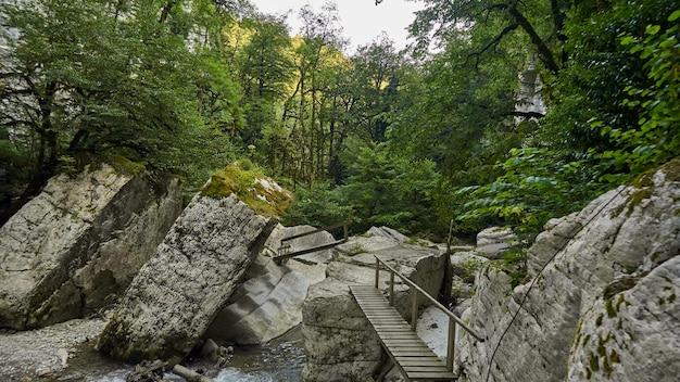 Kamienie leżą na brzegu zimnej górskiej rzeki na tle nadmorskiego lasu. soczi