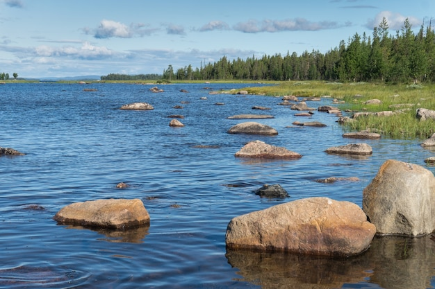 Kamienie na niebieskim jeziorze na tle zielonego lasu, szwecja