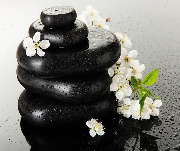 Kamienie spa i białe kwiaty na szaro