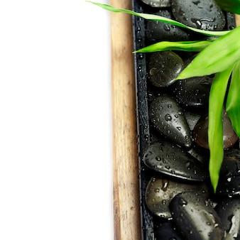 Kamienie zen i bambus