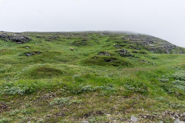 Kamieniste wzgórza we mgle latem, wyspa soroya, norwegia