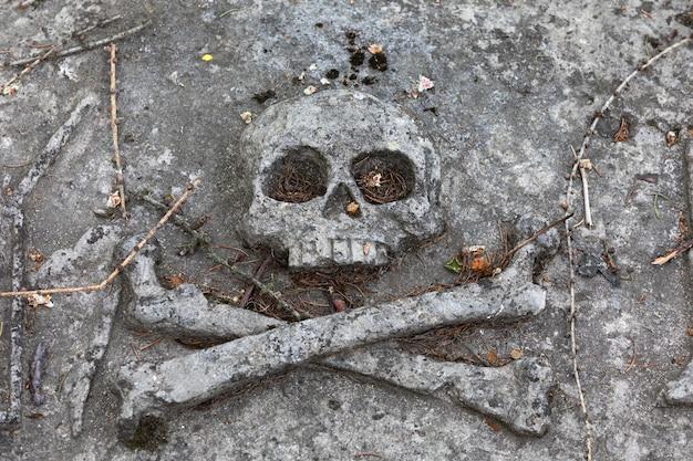 Kamienna płaskorzeźba przedstawiająca czaszkę i kości na płycie cmentarnej