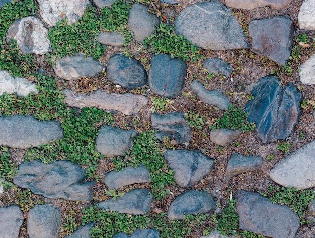 Kamienna powierzchnia z trawą