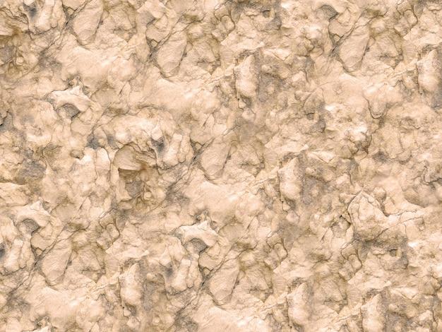 Kamienna tekstura w ogrodzie