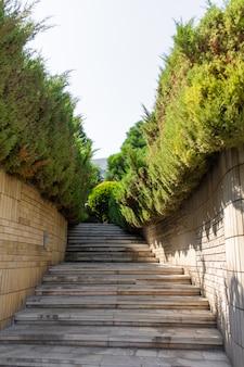 Kamienne schody w zielonym ogrodzie. zadbany teren