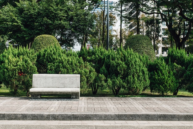 Kamienne siedzenia w parku z sosnami w tle.