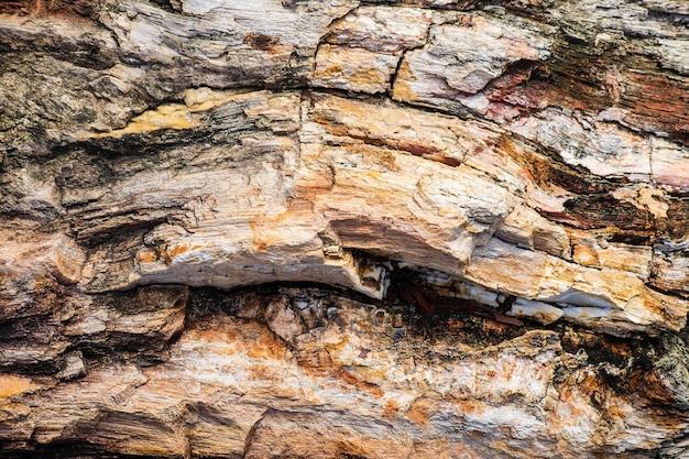 Kamienny wzór tła