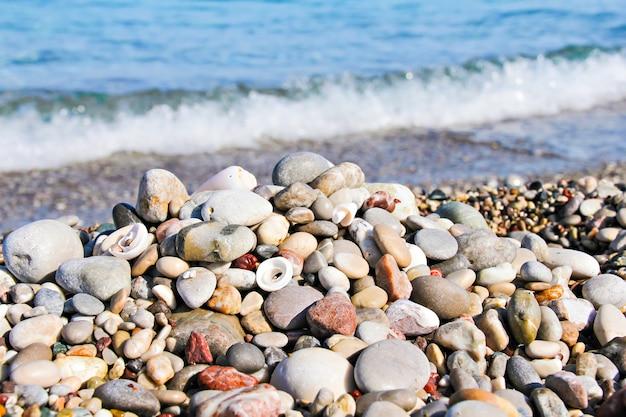 Kamyczki i muszle na plaży z morzem