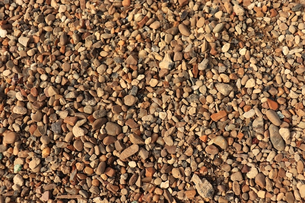 Kamyki na ziemi brązowe kamyki na plaży