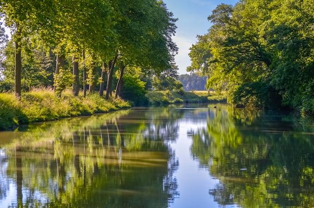 Kanał du midi, jaworu drzew odbicie w wodzie, południowy francja