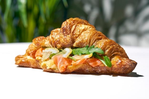 Kanapka croissant z łososiem, rukolą i omletem. ostre światło. białe tło