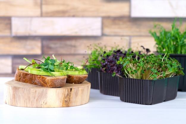Kanapki z microgreens i awokado na stole. koncepcja zdrowego odżywiania czystej żywności