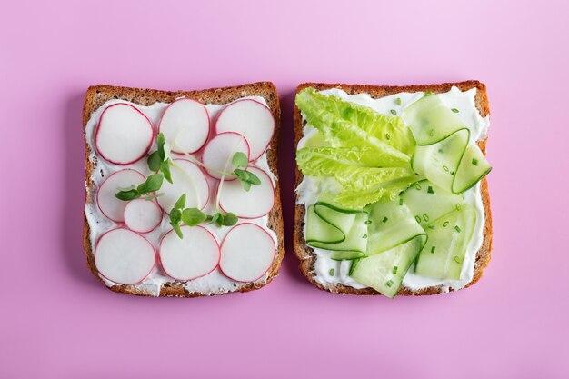 Kanapki z serem mascarpone, ogórkiem, rzodkiewką na różowej ścianie. widok z góry. kopia przestrzeń.