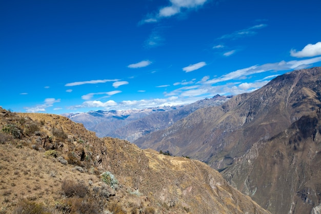 Kanion colca jest najgłębszy na świecie