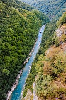 Kanion rzeki tara