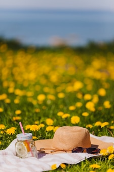 Kapelusz i okulary na trawie