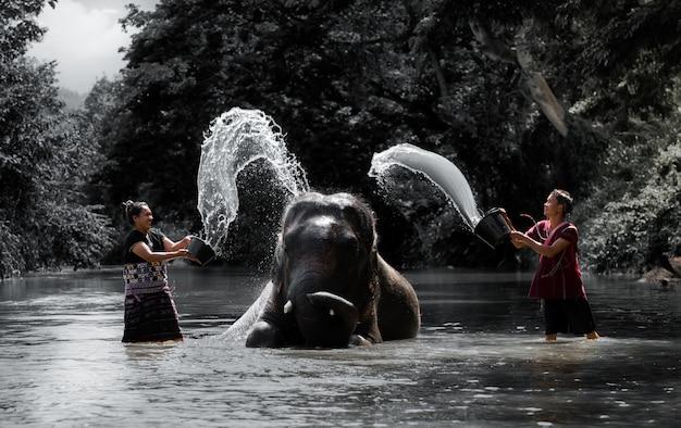 Kąpielowy słoń żyj ze szczęścia