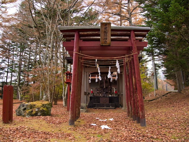 Kapliczka shinto