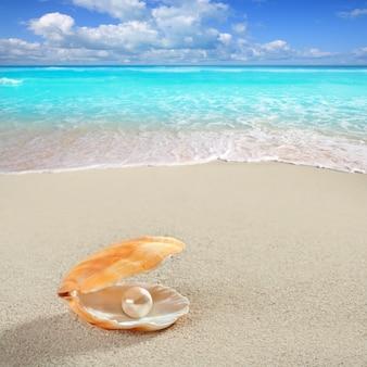Karaibska perła na muszli biały piasek plaża tropikalna