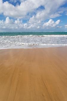 Karaibska plaża z niebieskim niebem