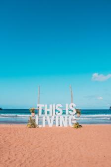 Karaibska plaża z palmami i falami w słoneczny dzień