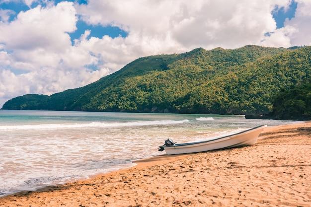 Karaibska plaża z palmami i falami