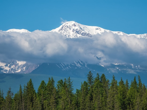 Karkonosze ze śniegiem nad zielonym lasem w słoneczny dzień. lodowiec pod błękitnym niebem. niesamowity śnieżny krajobraz górski o majestatycznej przyrodzie.