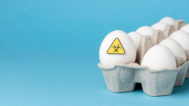 Karma jajeczna modyfikowana gmo w pudełku kartonowym