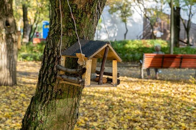 Karmnik dla ptaków i wiewiórek wiszący na drzewie w parku