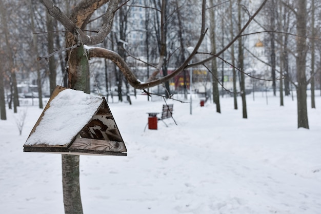 Karmnik dla ptaków w śniegu w winter park