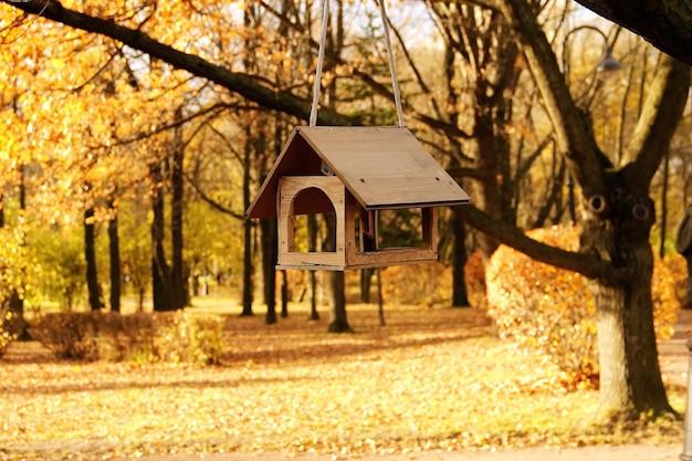 Karmniki dla ptaków na drzewie w jesiennym parku publicznym