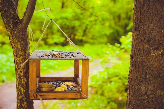 Karmniki dla ptaków w parku miejskim