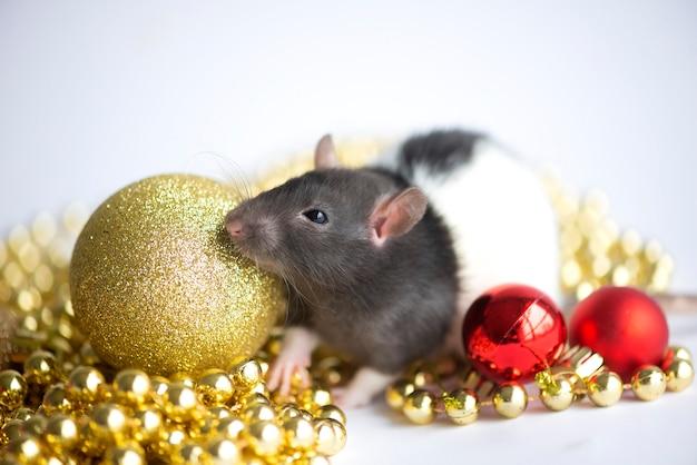 Karta noworoczna symbol nowego roku 2020 szczur z boże narodzenie wystrój złote i czerwone bombki na białym tle