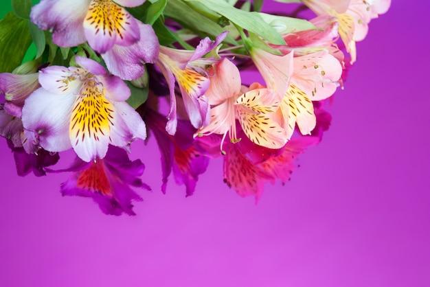 Kartka z życzeniami z kwiatami. sztandar z alstroemeria kwitnie na neonowym tle.