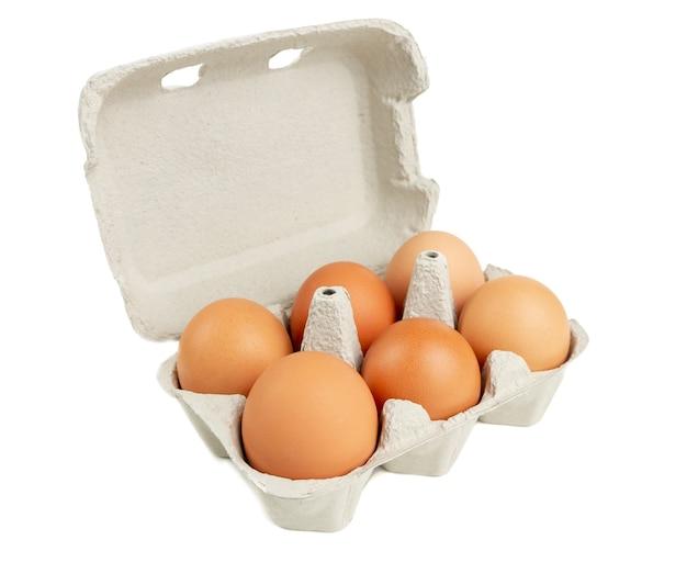 Karton paczka sześć brown kurczaków jajek odizolowywających na białym tle
