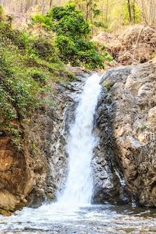Kaskada kołysze widoki wzdłuż naturalnych lasów tropikalnych.