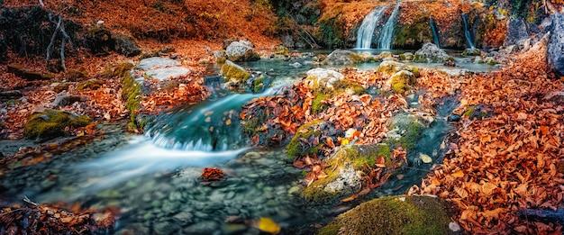 Kaskada wodospadu w lesie jesienią wśród opadłych kolorowych jasnych liści.