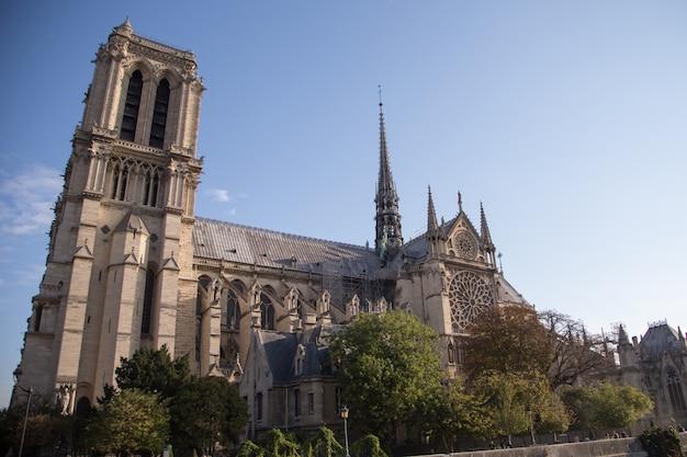 Katedra notre dame de paris.paris. francja