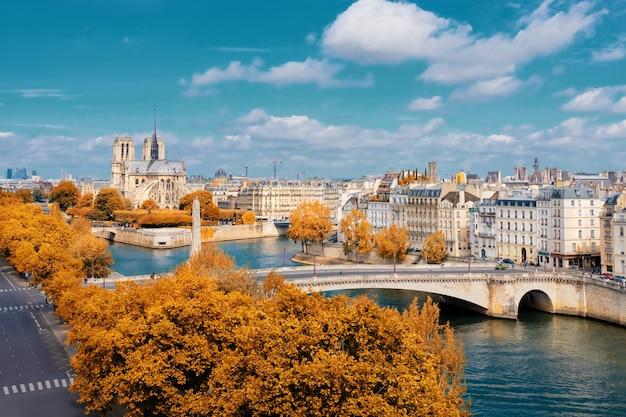 Katedra notre-dame w paryżu jesienią