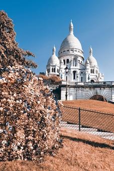 Katedra sacre coeur