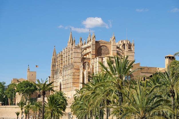 Katedra santa maria w palma de mallorca, hiszpania