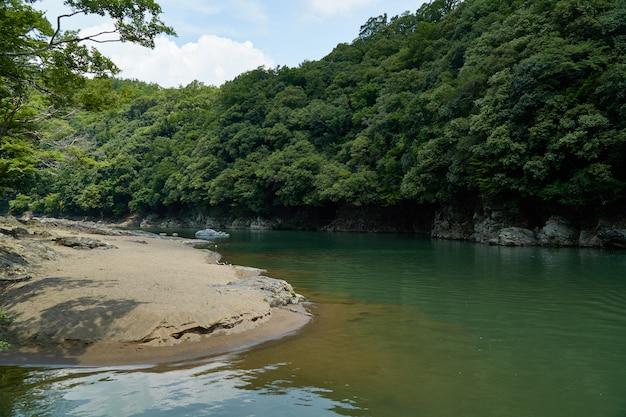 Katsura rzeka i brzeg z lasem