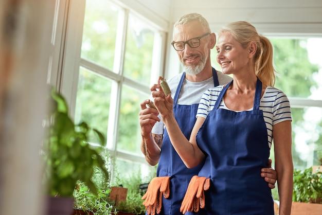 Kaukaska para w średnim wieku patrząca na suszone zioła