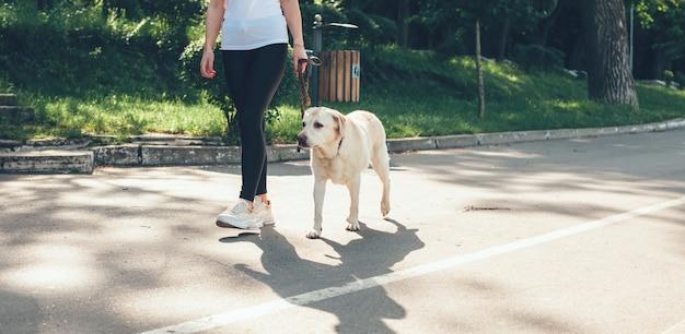 Kaukaska właścicielka golden retrievera spacerującego po drodze w parku z psem w słoneczny letni dzień
