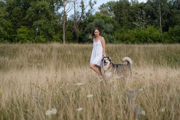 Kaukaski blond kobieta w białej sukni chodzić z psem alaskan malamute w lato pole. miłość i przyjaźń między człowiekiem a zwierzęciem.